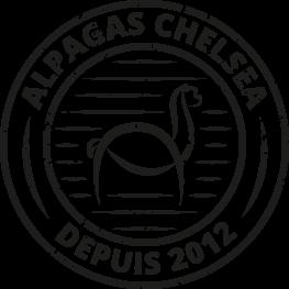 Alpagas Chelsea since depuis 2012